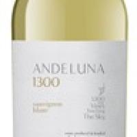 Bodega Andeluna presenta su nuevo ANDELUNA 1300 SAUVIGNON BLANC 2015