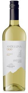 ANDELUNA1300-SAUVIGNON-BLANC sc