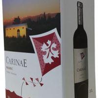 CarinaE presenta su nuevo formato Bag In Box de 3 litros!